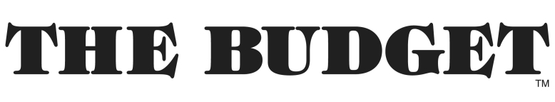 budget-logo-less-spacebw