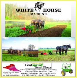 white-horse-machine-hpd-2016